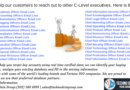 Make the entire C –Level Executives Give Importance to You with Promising Email List