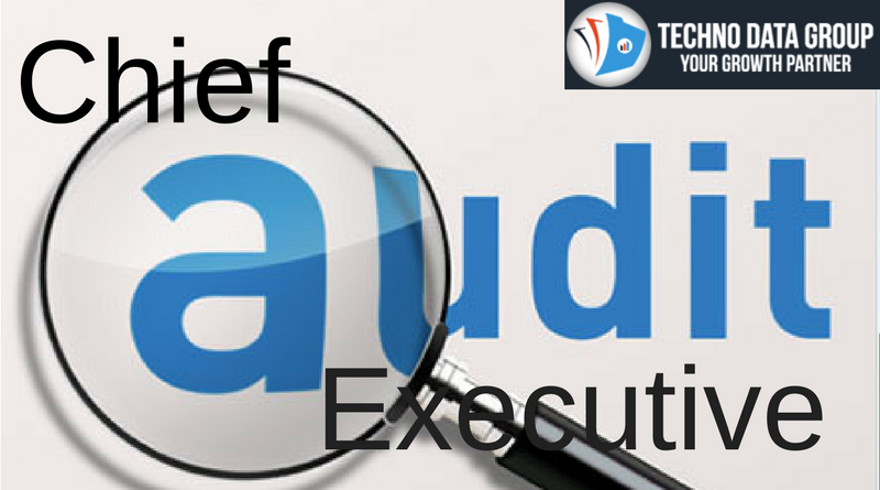 Chief audit executive email list