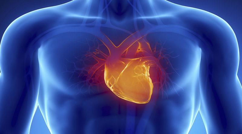 Cardiovascular Disease Specialist Email List