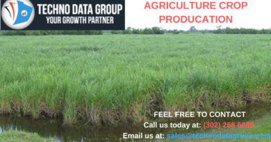 Agricultural Crop Production Business email database, Agricultural Crop Production Business List, Agricultural Crop Production Business email list, Agricultural Crop Production Business email providers