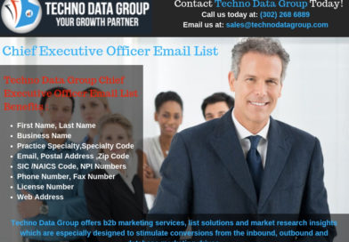 Why Techno Data Group is the best source to buy CEO email addresses?
